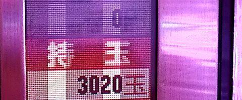 161202558