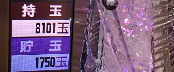 mezonikkokuyakusoku-sennpukukakuhen-17100425